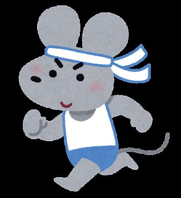 マラソンするネズミ